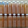 Hướng dẫn tự làm thuốc trừ sâu sinh học bằng chế phẩm EM