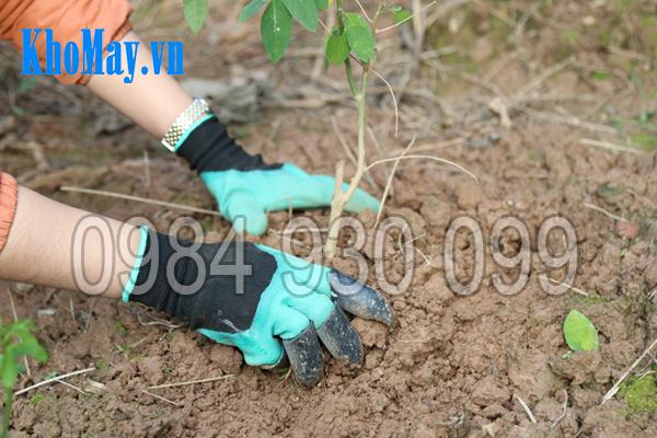 Găng tay làm vườn có móng 3A dành riêng cho người làm vườn