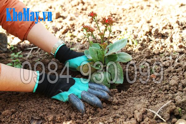 Găng tay làm vườn có móng 3A giúp bạn trồng cây dễ dàng