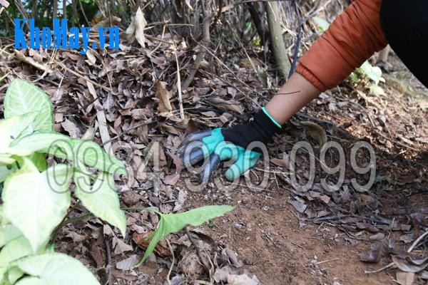 Găng tay làm vườn có móng 3A giúp dọn vườn dễ dàng, an toàn