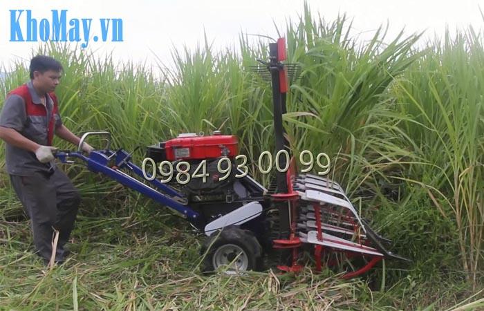 Hoạt động của máy cắt cỏ đẩy tay
