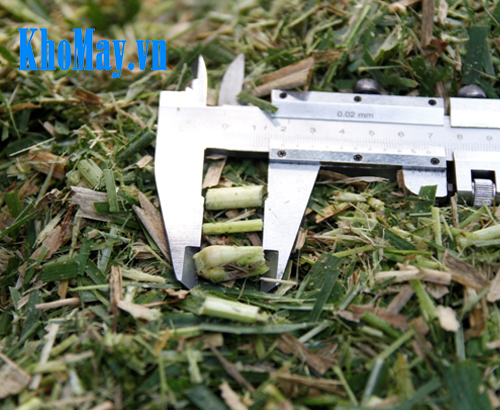 máy băm cỏ, máy băm cỏ voi, máy băm cỏ cho bò