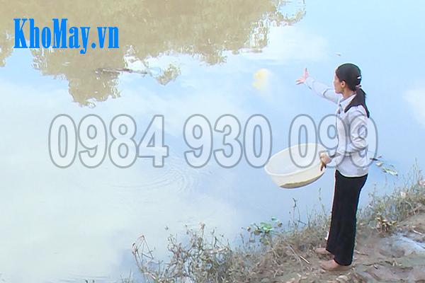 Sử dụng máy ép viên thức ăn thủy sản 3A15Kw giúp bà con tiết kiệm chi phí, nâng cao hiệu quả sản xuất