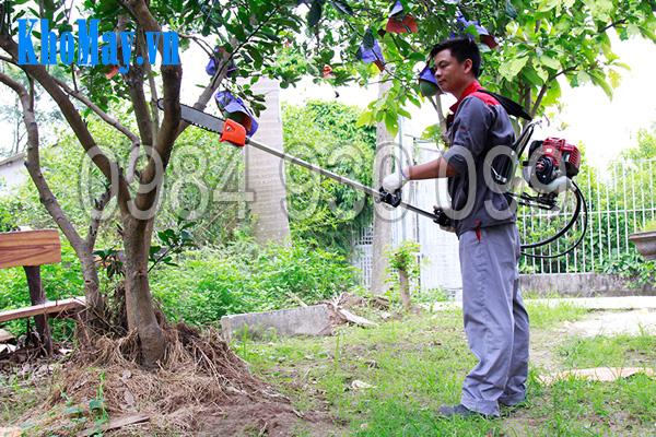 Máy làm vườn đa năng 3A: Tính năng cắt cành cây