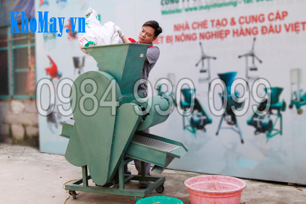 Kỹ thuật viên đổ nguyên liệu vào Máy tách vỏ đậu phộng 3A3Kw