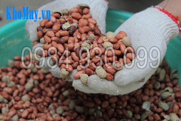 Máy tách vỏ đậu phộng 3A3Kw có khả năng tách sạch đạt 85-90%