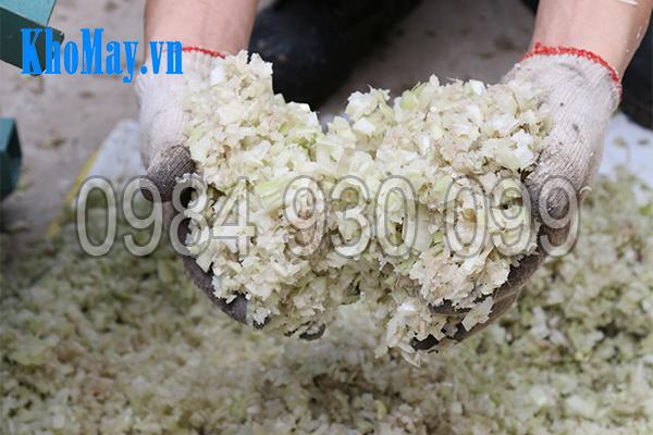 Chuối băm nhỏ bằng máy thái chuối đa năng 3A1,5Kw