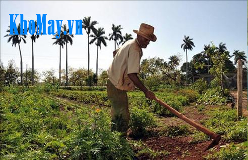 Máy xới đất mini làm vườn, máy xới đất mini, máy làm vườn, thiết bị làm vườn,