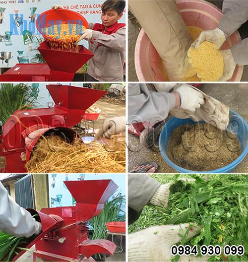 Sản phẩm của máy băm nghiền xơ dừa, cỏ voi 3A8Hp