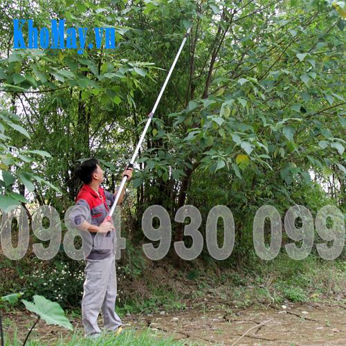 Kéo cắt cành cây trên cao 3A3M || Kéo cưa cành tầm cao