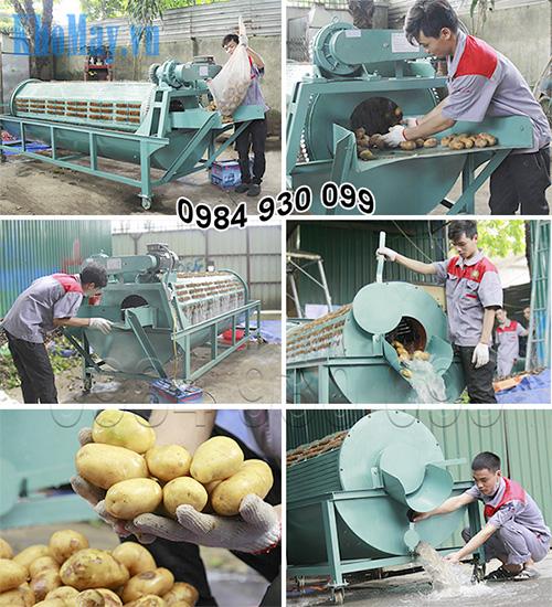 Kỹ thuật viên vận hành Máy rửa khoai tây, khoai lang bằng xơ dừa 3A3Kw