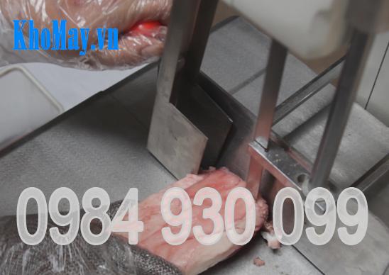 máy cắt khúc cá, máy cắt cá đông lạnh, máy cắt khúc thực phẩm, máy cưa xương