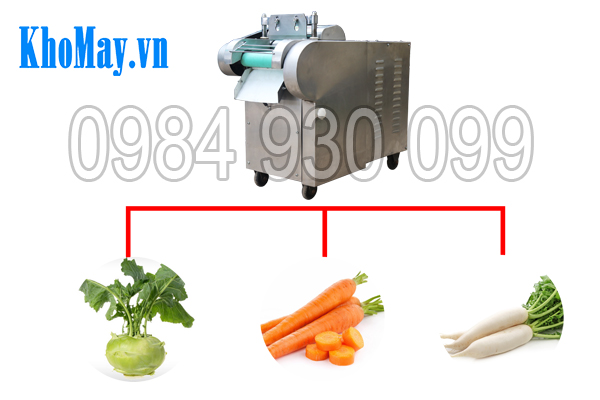 Máy thái rau củ quả 3A1,5Kw (có băng tải) có thể thái đa dạng nguyên liệu