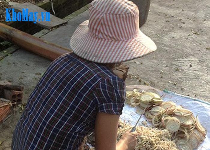 máy thái chuối đa năng, máy băm chuối, máy băm cây chuối, máy xắt cây chuối, máy băm chuối cho gà