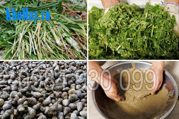 Một số nguyên liệu được máy chế biến thức ăn chăn nuôi 3A2,2Kw 3 pha (phễu tròn) băm và nghiền nát nhuyễn
