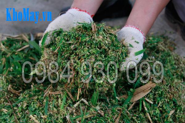 Sản phẩm băm nhỏ của máy chế biến thức ăn chăn nuôi 3A 3 pha (phễu tròn)